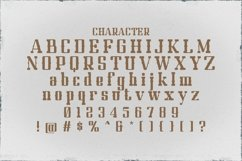 Web Font Texas Product Image 3