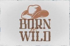 Web Font Texas Product Image 5
