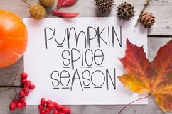 Web Font Thanksgiving Margarita - A Quirky Handlettered Font Product Image 3
