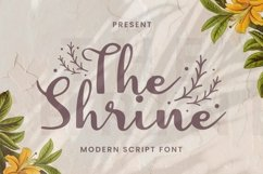 Web Font The Shrine Font Product Image 1