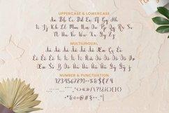 Web Font The Shrine Font Product Image 5