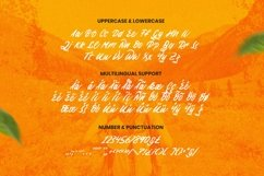 Web Font The Wildest Product Image 3