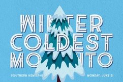 Web Font The Winter Product Image 5