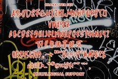 Web Font TheGraffiti - Modern Fancy Font Product Image 5