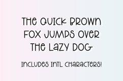 LAUNDRY MONDAY Stylish Farmhouse Font Product Image 4