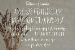 Trattoria - Calligraphy Font with Swash Product Image 5