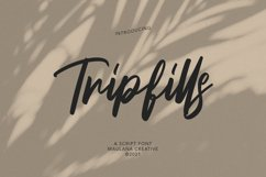 Tripfills Script Font Product Image 1
