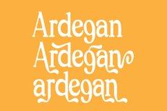 Ardegan Product Image 4