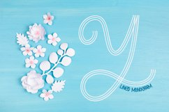 Lined Monogram Font Product Image 1