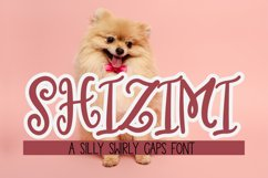 Shizimi - A whimsical swirly caps font Product Image 1