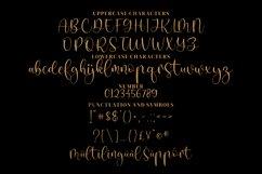 Devin _ Handwritten Script Font Product Image 6