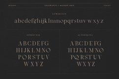 Vegawanty Modern Serif Product Image 3