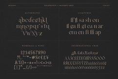 Vegawanty Modern Serif Product Image 4