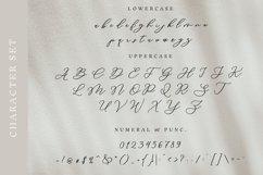 Vincci Morgans Script Product Image 6