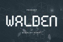 Web Font Walden Font Product Image 1
