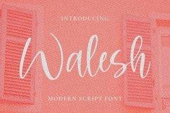 Web Font Walesh Product Image 1