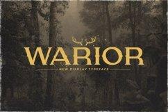 Web Font Warior Product Image 1