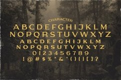 Web Font Warior Product Image 4