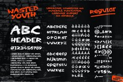 Wasted Youth: A 90s Grunge Inspired Brush Font Product Image 2