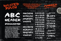 Wasted Youth: A 90s Grunge Inspired Brush Font Product Image 3