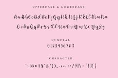 Welcome - Modern Script Font Product Image 2