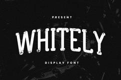 Web Font Whitley Font Product Image 1