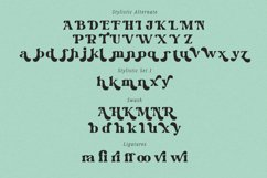 Wild Month-Serif Font Product Image 5
