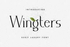 Web Font Wingters Font Product Image 1