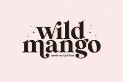 Wild Mango - A Modern Serif Font Product Image 1