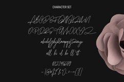 Zapatos Signature Script Font Product Image 3
