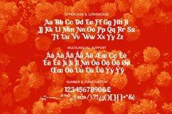Web Font Zephyr Font Product Image 5