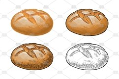 Rye bread. Vector color realistic and engraving on the white Product Image 1