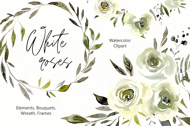 Watercolor White Roses Flowers Png