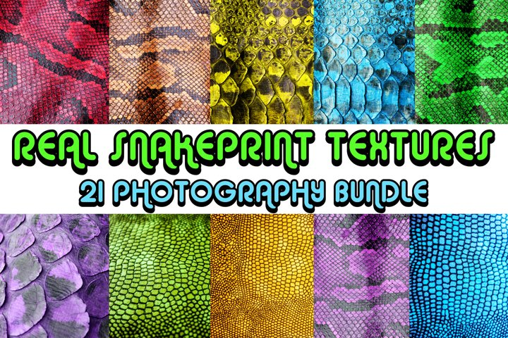 Coloured Snake Print Skin 21 Photography Testure Bundle!
