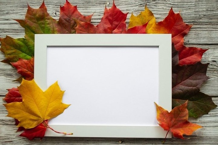 Autumn leaves with frame for text