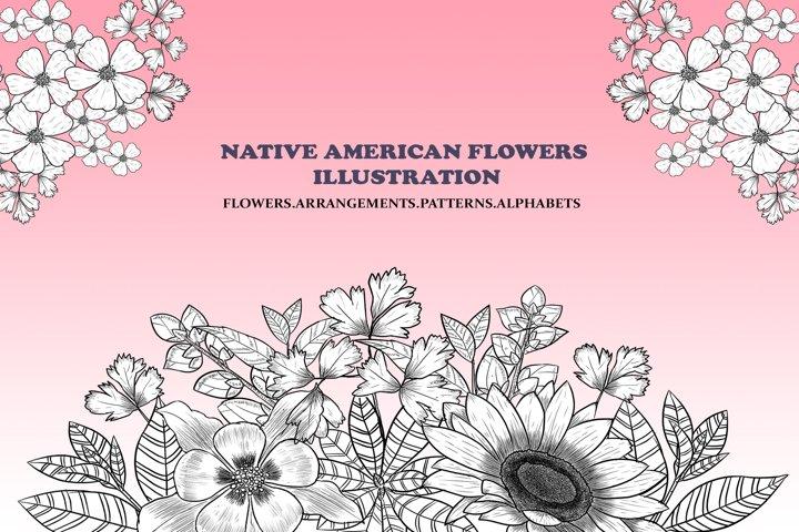 Native American Flowers Illustration