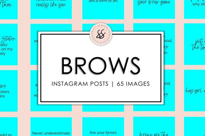 Brows Aqua Instagram Posts