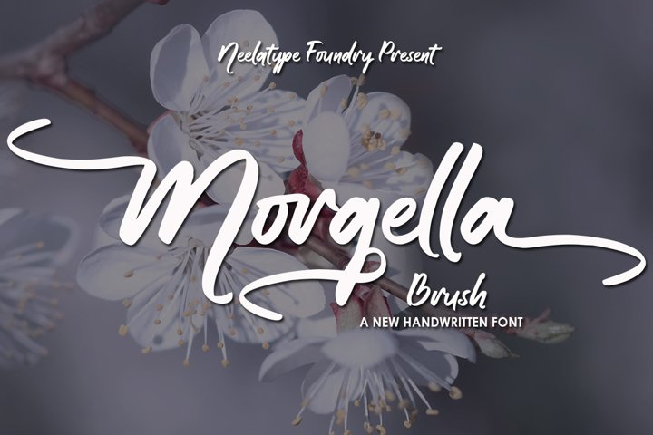 Morgella Brush