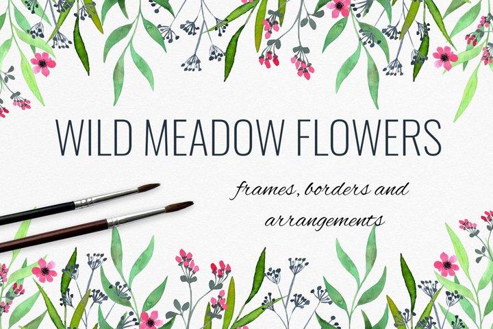 Wild meadow flowers frames, borders and arrangements