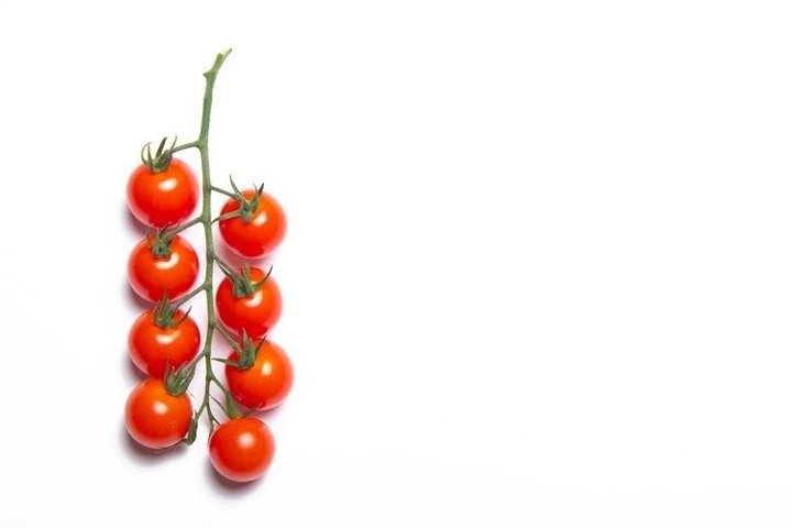 A series of 11 photos Cherry tomatoes branch isolated