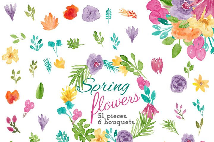 Spring Flower Watercolor Clip Art