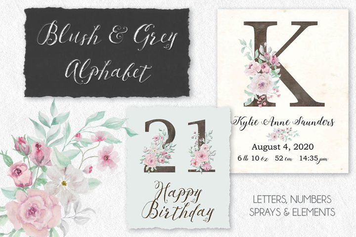 Blush and grey rose alphabet