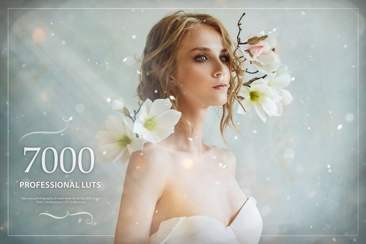 7000 Professional LUTs Look Up Tables