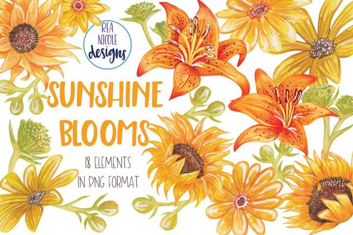 Summer Sunshine Blooms clipart