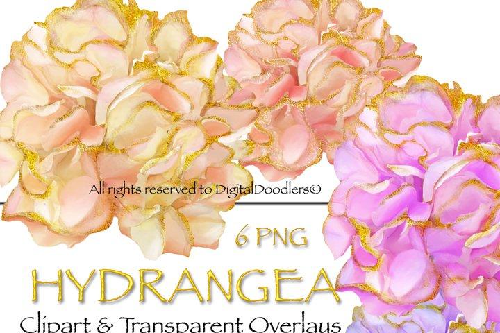 Gold Embellished Hydrangeas