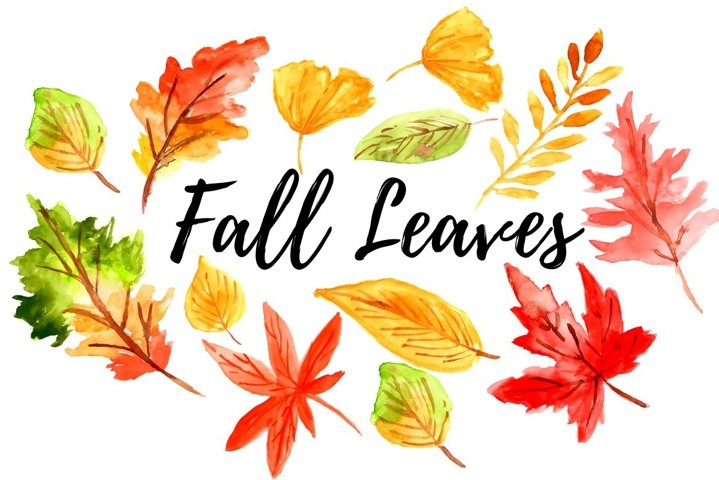 Watercolor fall autumn leaves clipart
