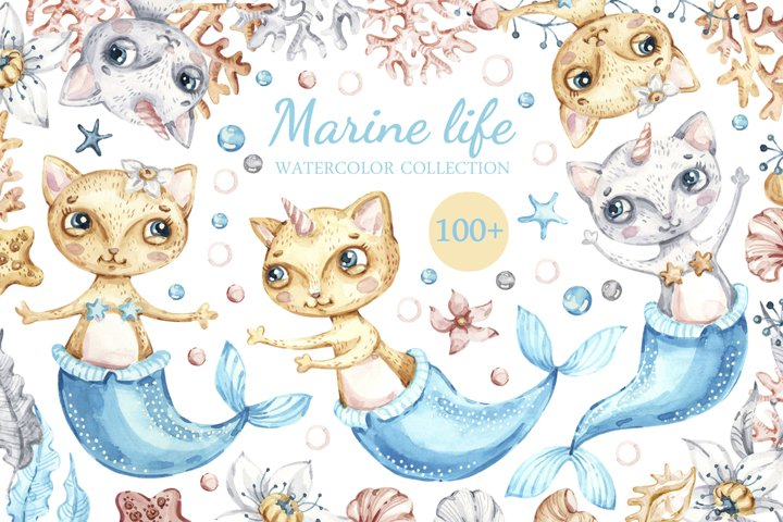 Marine Life, Cat Mermaids, seashells watercolor collection.