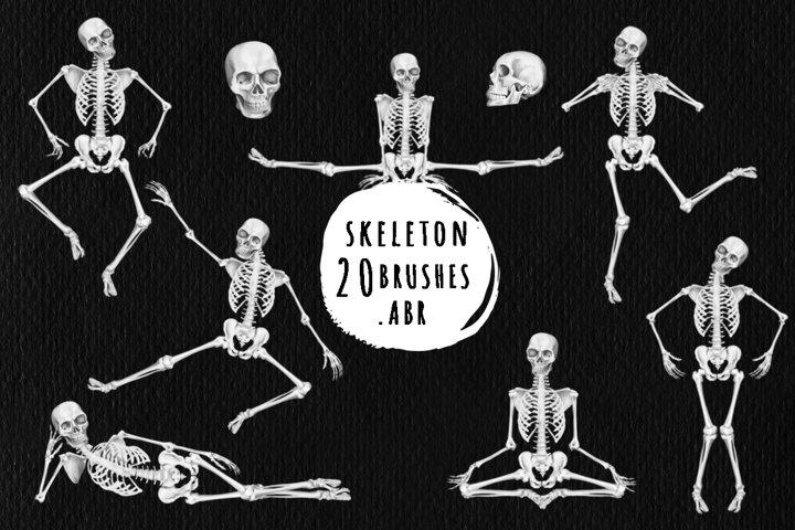 Skeleton brushes for Photoshop, ProCreate .ABR
