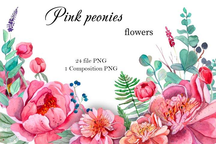 Pink Peonies Flowers Clipart.