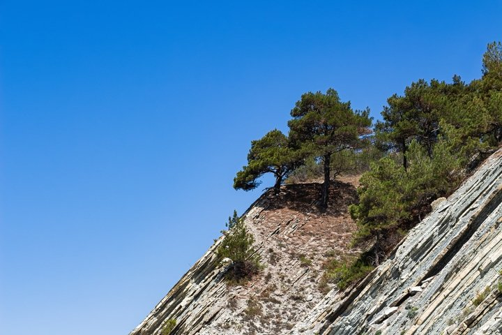 Top of a cliff with trees against a bright blue sky. 3pcs
